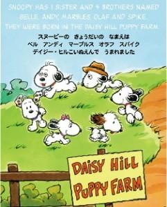 daisyhillpuppyfarmstory253.314