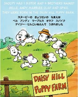 スヌーピーがデイジーヒル子犬園で生まれてチャーリー・ブラウンに飼われるまで