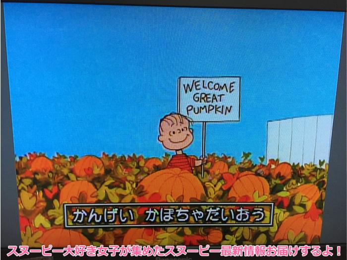 スヌーピーとかぼちゃ大王ハロウィンパンプキンDVDブルーレイ3