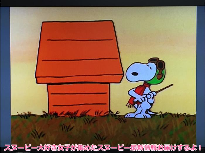 スヌーピーとかぼちゃ大王ハロウィンパンプキンDVDブルーレイ6