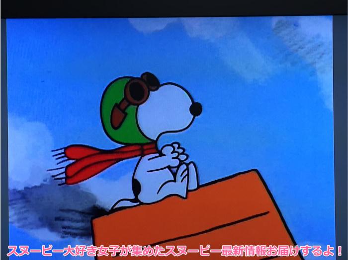 スヌーピーとかぼちゃ大王ハロウィンパンプキンDVDブルーレイ9
