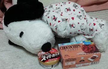 スヌーピー誕生日2018大好物アイスチョコチップクッキープレゼント2