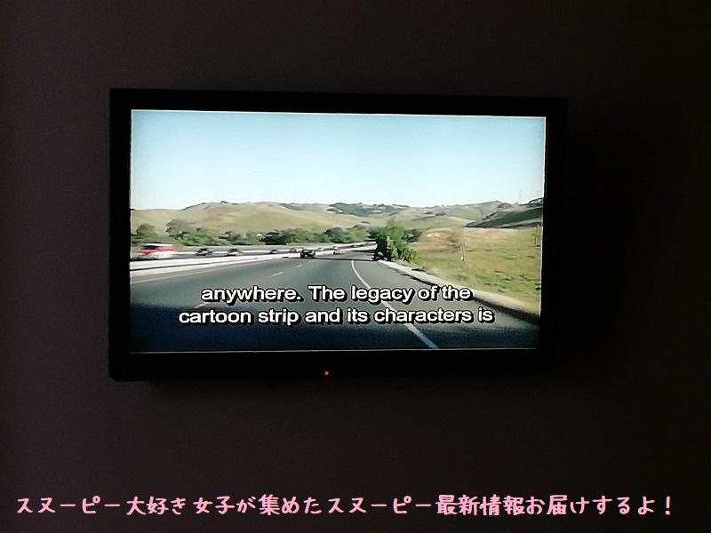 スヌーピーシュルツミュージアム美術館アメリカサンタローザ2019年10月81