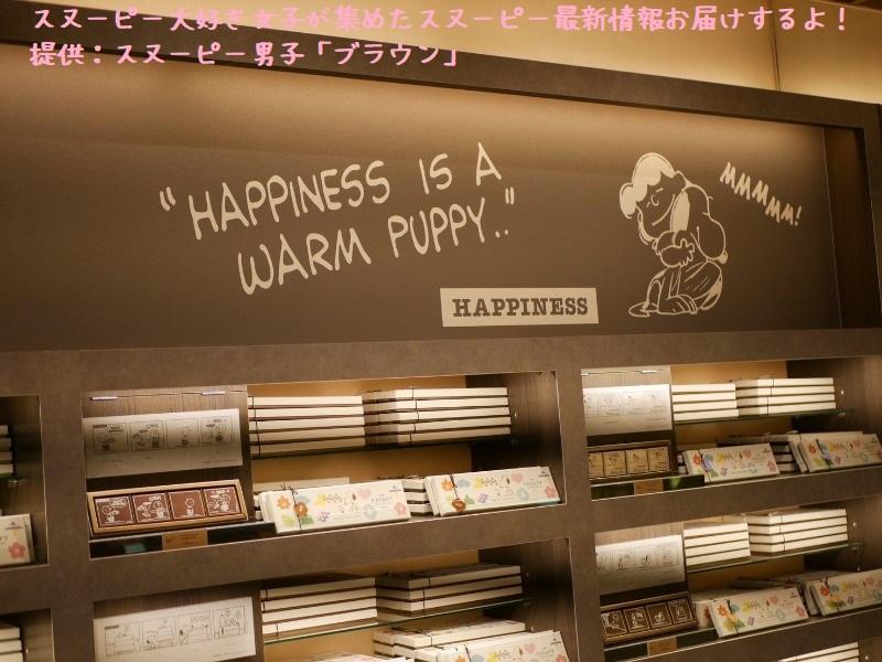 スヌーピーショコラ感想レポ2019京都嵐山かわいい和コラボチョコブラウン4