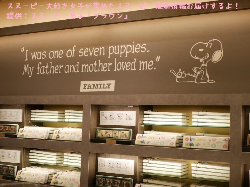 スヌーピーショコラ感想レポ2019京都嵐山かわいい和コラボチョコブラウン5