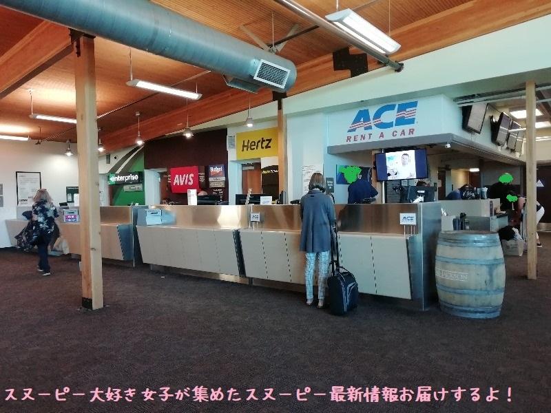 スヌーピーソノマ空港アメリカサンタローザ2019年10月フライングエース46