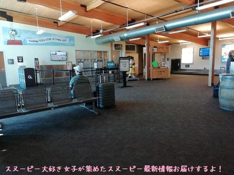 スヌーピーソノマ空港アメリカサンタローザ2019年10月フライングエース47