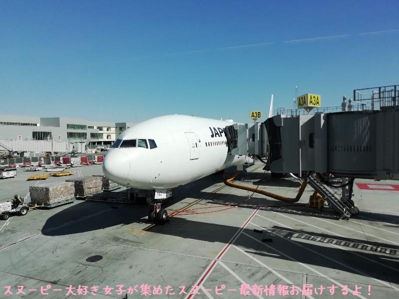 スヌーピーアメリカ旅行2020サンタローザサンフランシスコ飛行機JAL帰り8