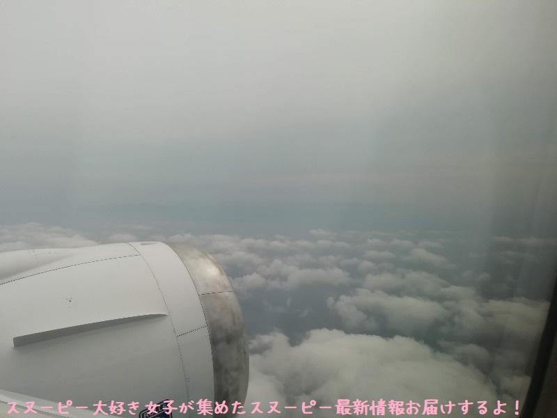 スヌーピーアメリカ旅行2020サンタローザサンフランシスコ飛行機JAL行き1