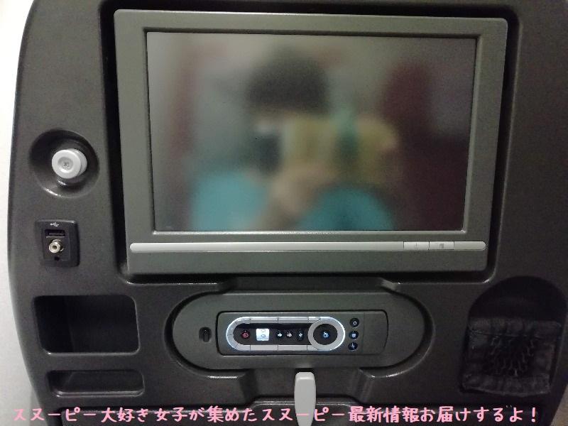 スヌーピーアメリカ旅行2020サンタローザサンフランシスコ飛行機JAL行き11