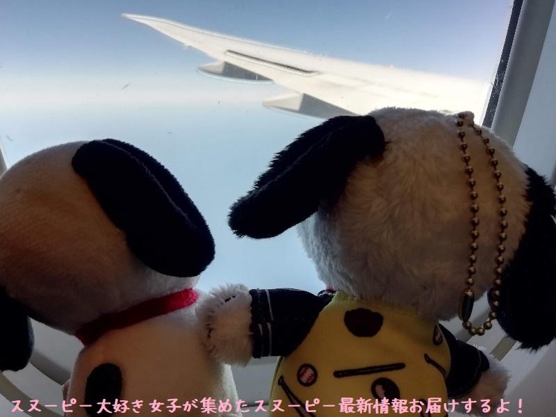 スヌーピーアメリカ旅行2020サンタローザサンフランシスコ飛行機JAL行き34
