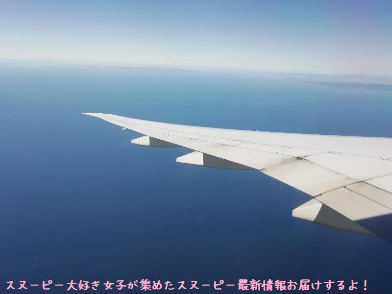 スヌーピーアメリカ旅行2020サンタローザサンフランシスコ飛行機JAL行き36