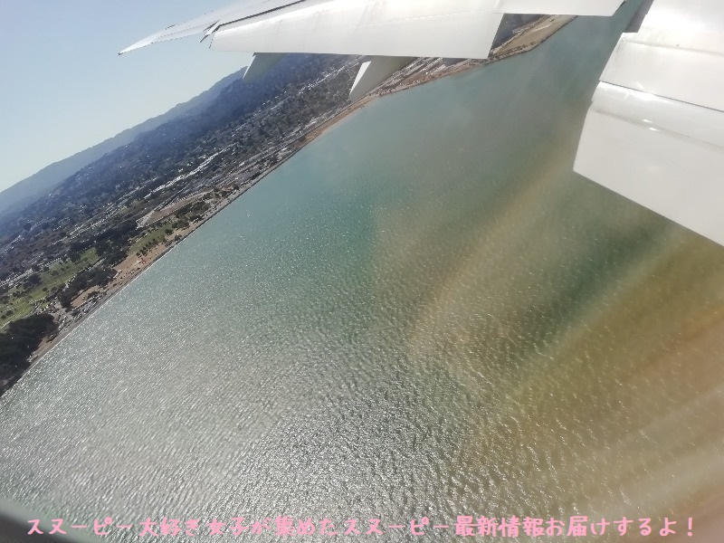スヌーピーアメリカ旅行2020サンタローザサンフランシスコ飛行機JAL行き43