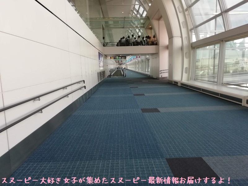スヌーピーアメリカ旅行2020サンタローザサンフランシスコ飛行機JAL行き7