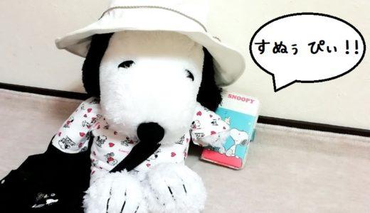 サンタローザ旅行に行くスヌーピーファンのための英語対策☆フレーズ付き!