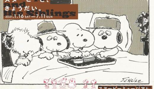 スヌーピーミュージアム南町田♡第2回企画展はSNOOPYのきょうだい!
